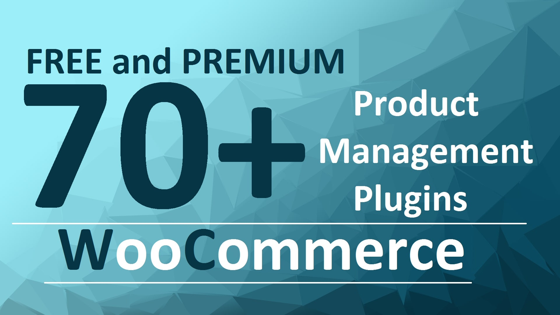70+ Free and Premium Product Management Plugins For WooCommerce in 2020
