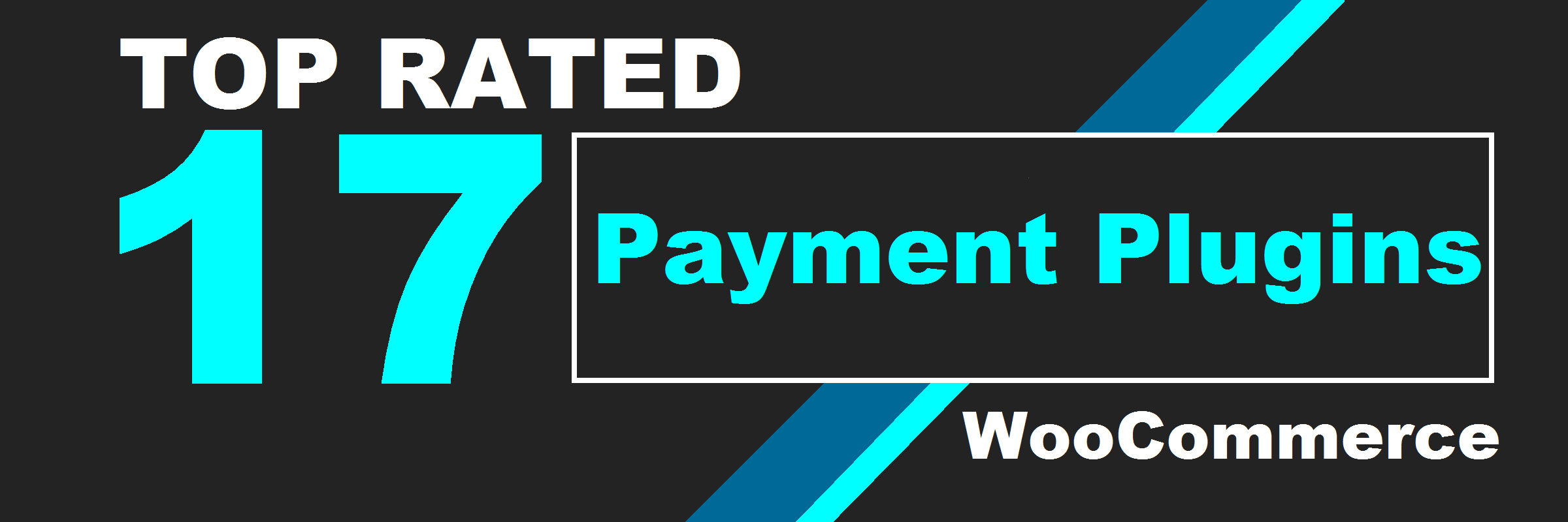 17 Top Rated Payment Gateway Plugins For WooCommerce